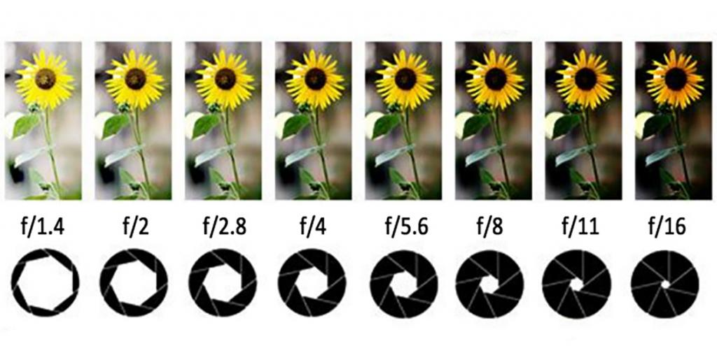 Go For A Wide Aperture To Let More Light In