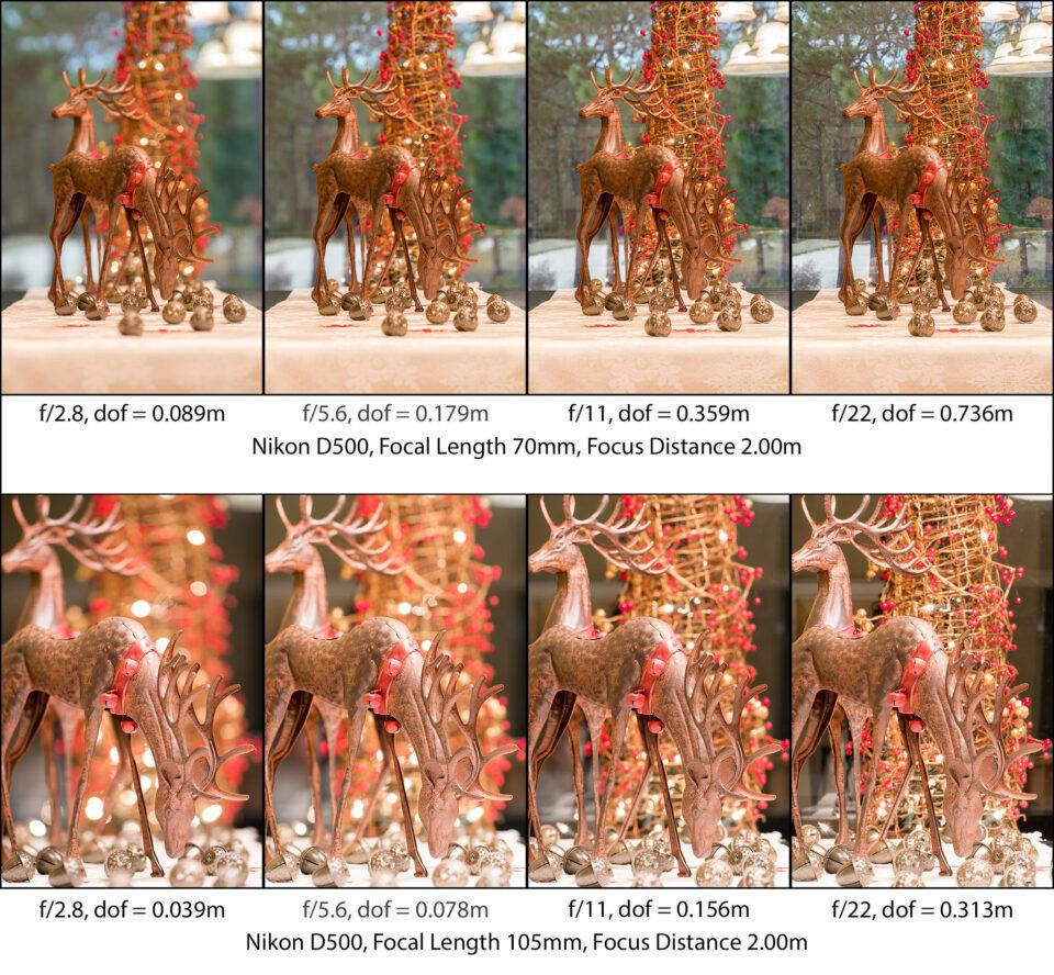depth of field photography-5.1